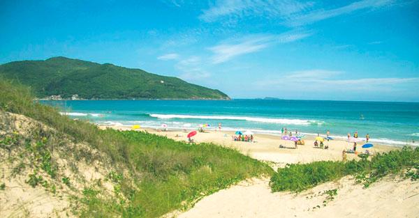 Aluguel de casa e apartamentos próximos a beira mar nas praias do Balneário dos Açores, Pântano do Sul e Solidão.