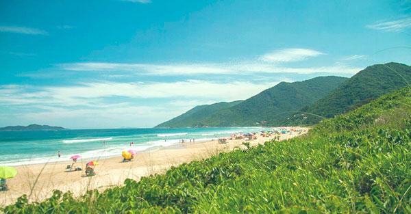 Imóveis próximos a trilha da praia do Saquinho no Sul da Ilha de Florianópolis.